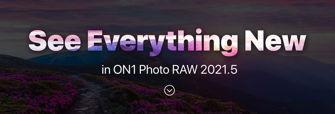 See Everything New
